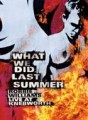 2DVDWilliams Robbie / What We Did Last Summer / Live / 2DVD