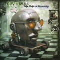 2LP / Gov't Mule / Life Before Insanity / Vinyl / 2LP / Coloured
