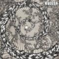 CD/DVDKylesa / Spiral Shadow / CD+DVD / Limited
