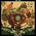 2LPFleet Foxes / Helplessness Blues / Vinyl / 2LP