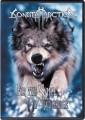 DVDSonata Arctica / For The Sake Of Revenge