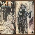 2LPGaye Marvin / Here My Dear / Vinyl