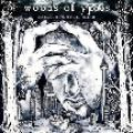 CDWoods Of Ypres / Woods 5:Grey Skies & Electric Light