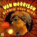 LPMorrison Van / Blowin' Your Mind / Vinyl