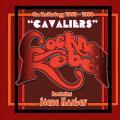 4CDCockney Rebel/Steve Harley / Cavaliers / Anthology 73-74 / 4CD