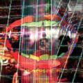 CDAnimal Collective / Centipede HZ