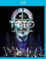 Blu-RayToto / 35th Anniversary Tour / Live In Poland / Blu-Ray
