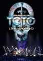DVDToto / 35th Anniversary Tour / Live In Poland