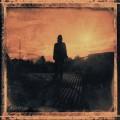 2LPWilson Steven / Grace For Drowning / Vinyl / 2LP