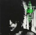 LPWaterboys / Pagan Place / Vinyl
