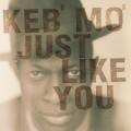 CDKeb'Mo / Just Like You