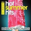 2CDVarious / Hot Summer Hits 2014 / 2CD