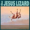 LPJesus Lizard / Down / Vinyl