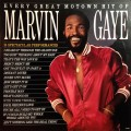 LPGaye Marvin / Every Great Motown Hit Of Marvin Gaye:... / Vinyl