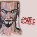 11CD / Bowie David / Brilliant Adventure 1992-2001 / Box / 11CD
