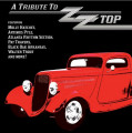 LPVarious / Tribute To ZZ Top / Coloured / Vinyl