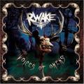 CDRwake / Voices Of Omens