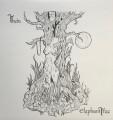 LPElephant Tree / Theia / Vinyl / Coloured / Purple