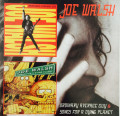 2CDWalsh Joe / Ordinary Average Guy / Songs For A Dying Planet / 2CD