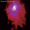 2LP / Porcupine Tree / Up The Downstairs / Vinyl / 2LP / Reedice 2021