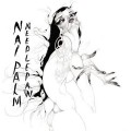2LPPalm Nai / Needle Paw / Vinyl / 2LP