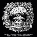 CD / Various / Total Holocaust Vol.1