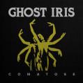 LP / Ghost Iris / Comatose / Vinyl