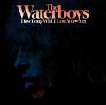 LPWaterboys / How Long Will I Love You 2021 / RSD / Vinyl