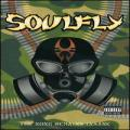 DVDSoulfly / Song Remains Insane