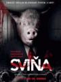 DVDFILM / Sviňa