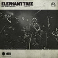 LP / Elephant Tree / Day of Doom - Live / Vinyl / Limited / Dark Green