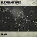 LP / Elephant Tree / Day of Doom - Live / Vinyl / Limited